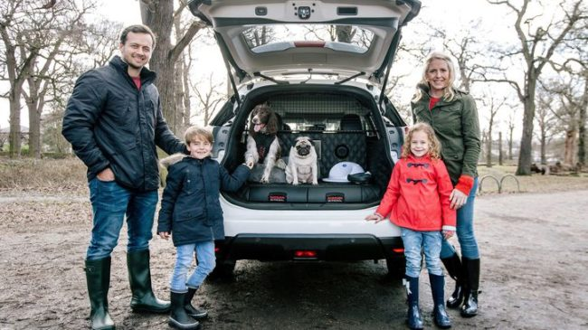 Nissan X Trail For Dogs >> Nissan Accommodates For Dogs In The New X Trail Driveline